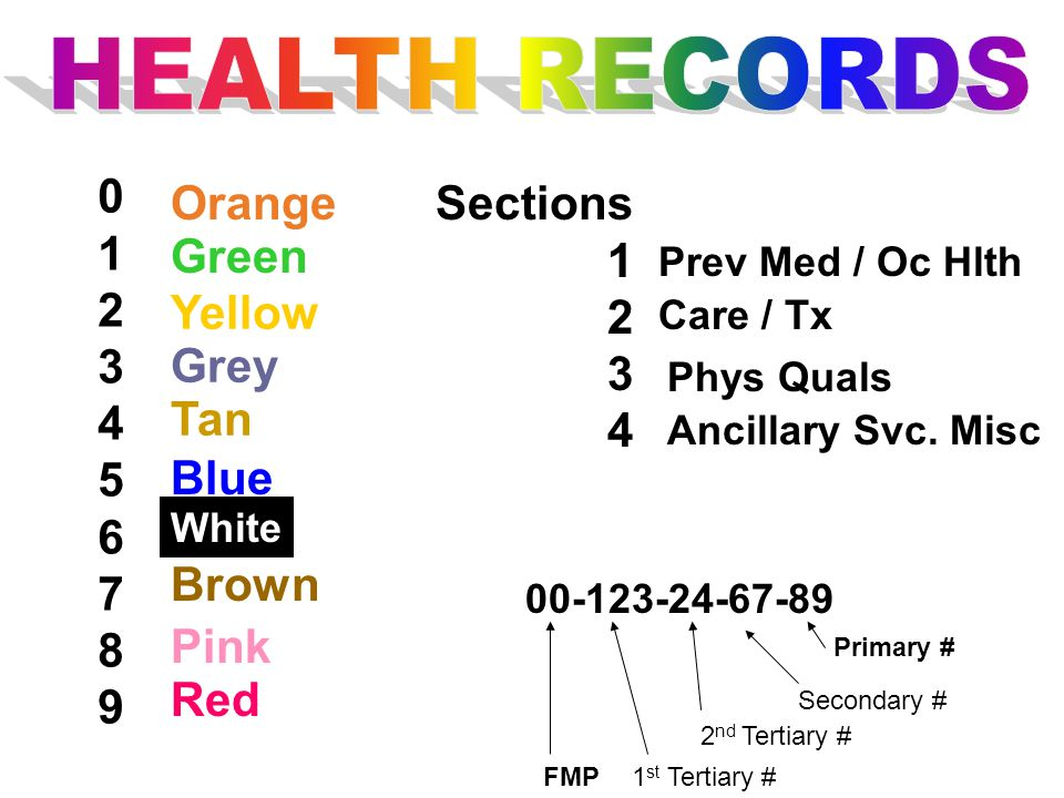 HEALTH RECORDS 1 2 3 4 5 6 7 8 9 Orange Sections 1 2 3 4 Green Yellow