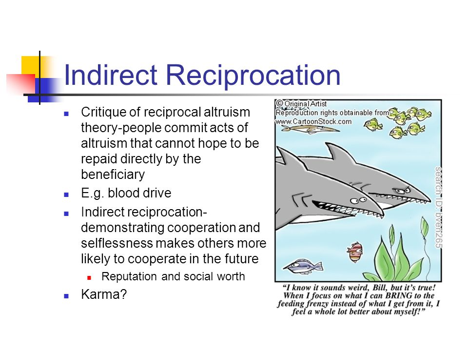 Indirect Reciprocation