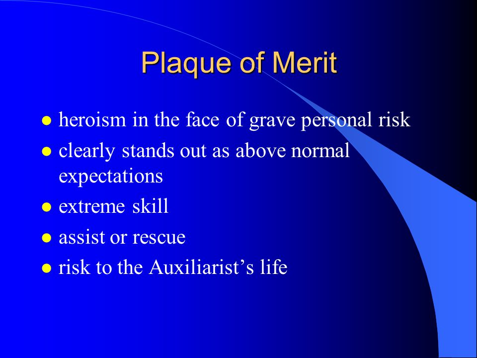 Plaque of Merit heroism in the face of grave personal risk