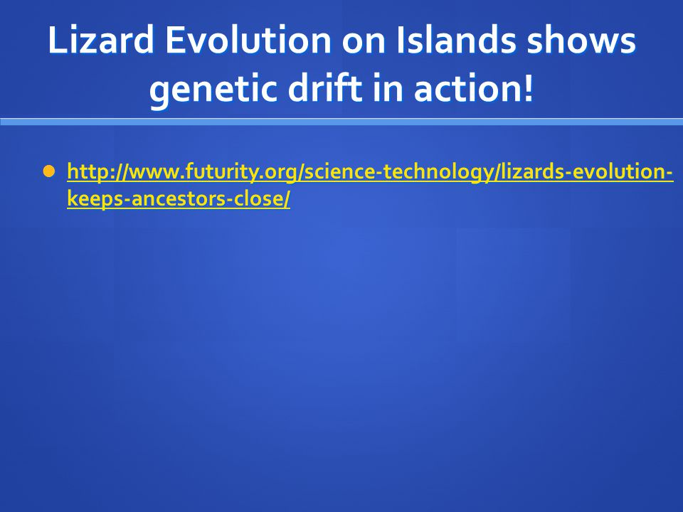 Lizard Evolution on Islands shows genetic drift in action!