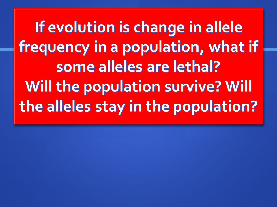 If evolution is change in allele frequency in a population, what if some alleles are lethal.