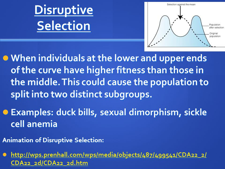 Disruptive Selection