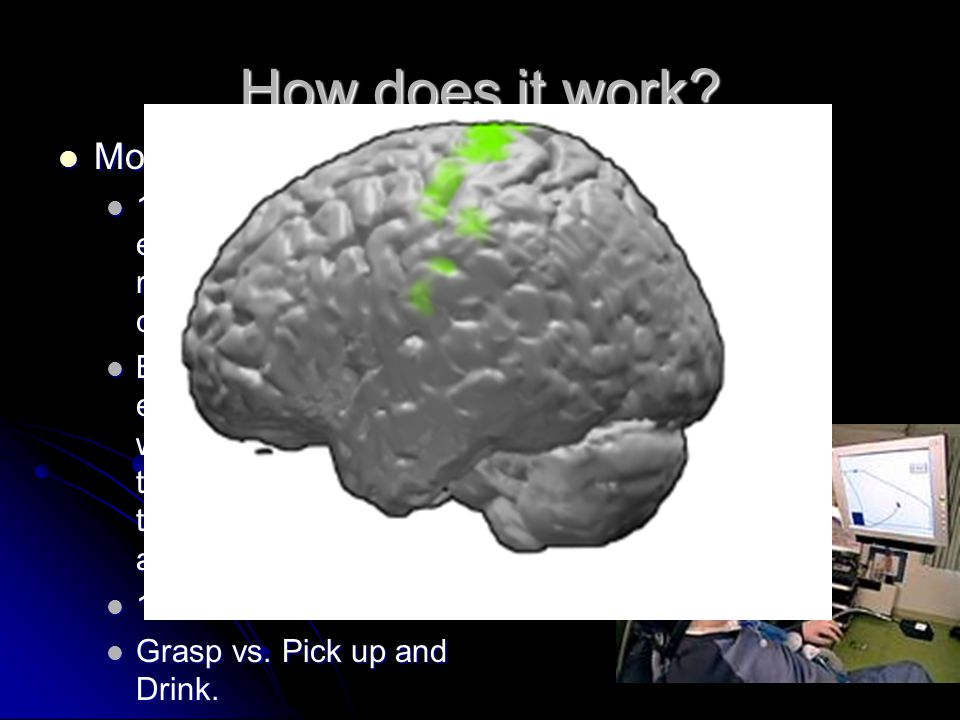 How does it work Motor Cortex