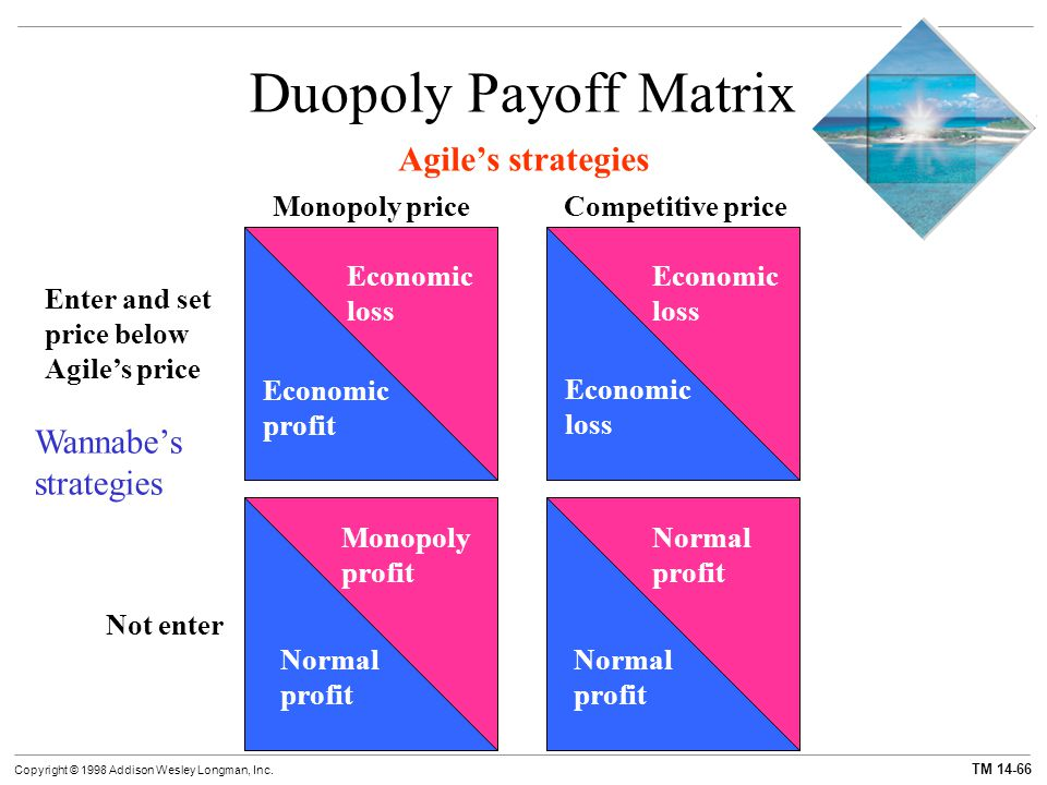 Duopoly Payoff Matrix Agile's strategies Wannabe's strategies