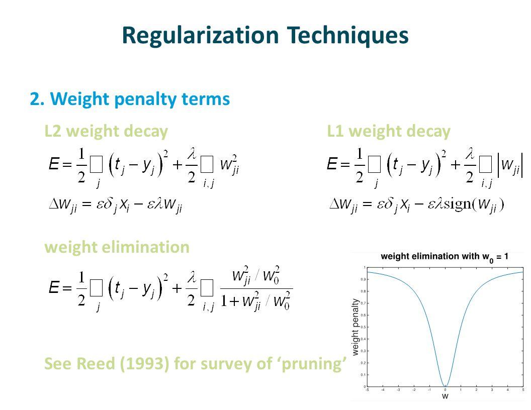 Regularization Techniques