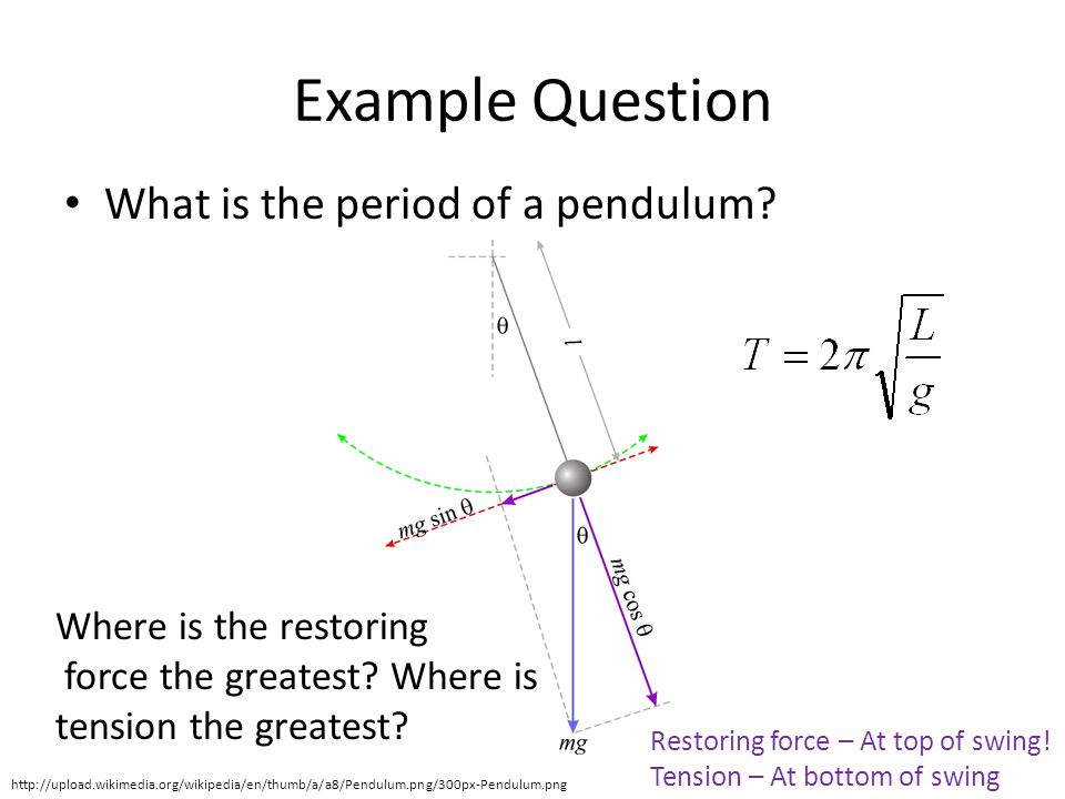 Example Question What is the period of a pendulum