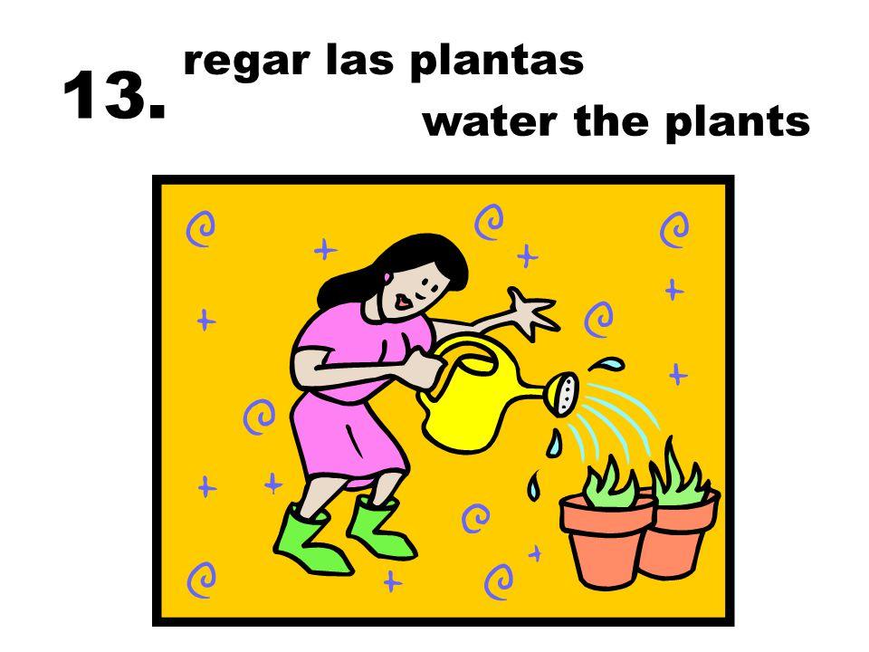 regar las plantas 13. water the plants