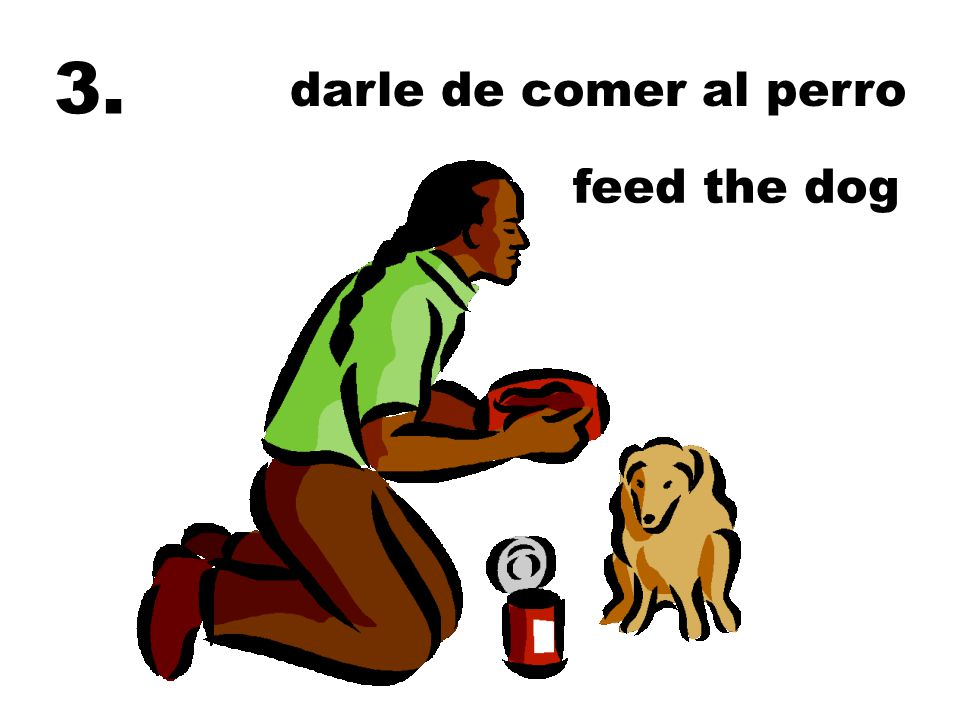 3. darle de comer al perro feed the dog