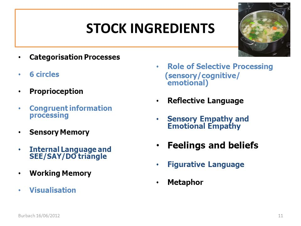 STOCK INGREDIENTS Feelings and beliefs Role of Selective Processing