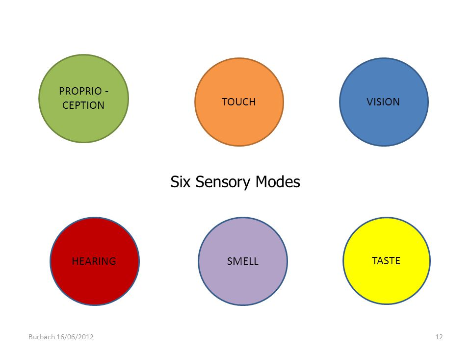 Six Sensory Modes PROPRIO - CEPTION TOUCH VISION HEARING SMELL TASTE