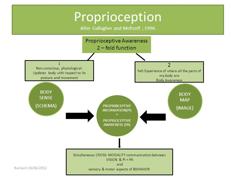 Proprioception After Gallagher and Meltzoff ; 1996