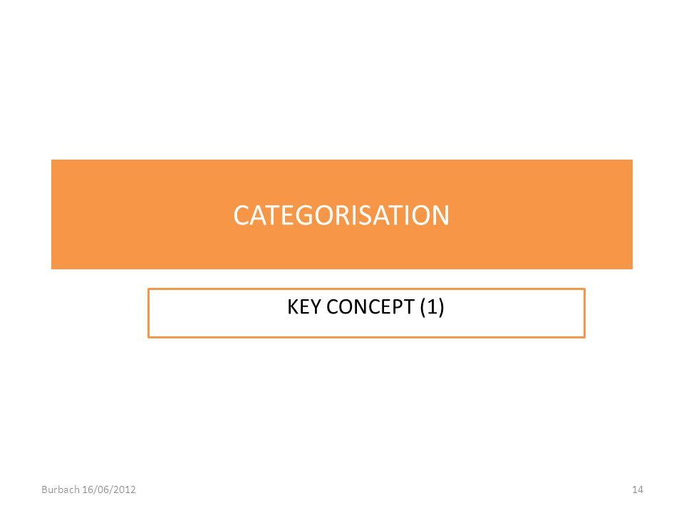 CATEGORISATION KEY CONCEPT (1) Burbach 16/06/2012