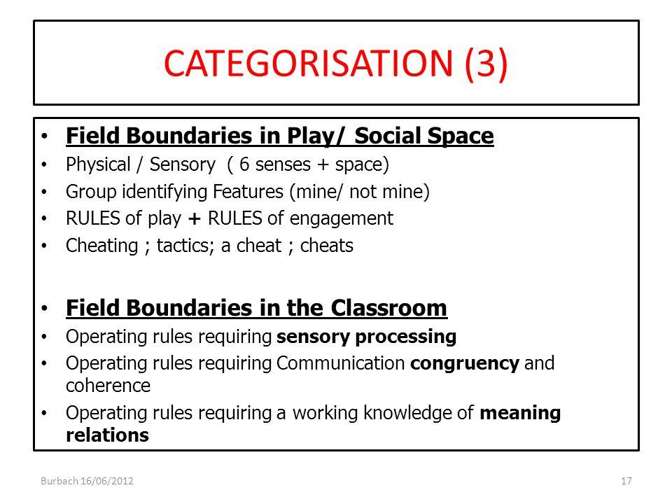 CATEGORISATION (3) Field Boundaries in Play/ Social Space