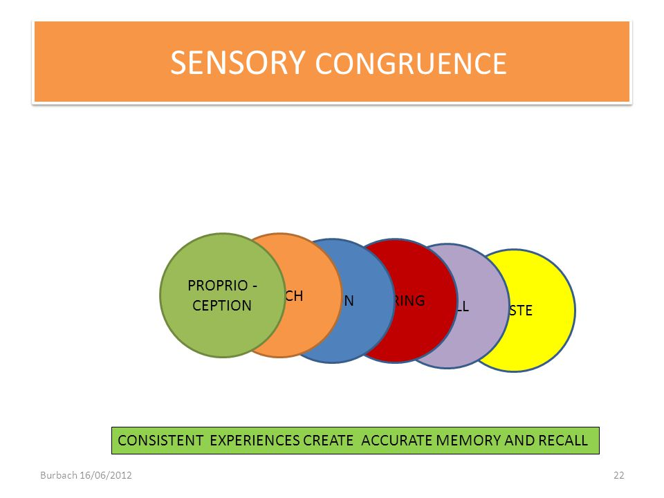 SENSORY CONGRUENCE PROPRIO - CEPTION TOUCH VISION HEARING SMELL TASTE