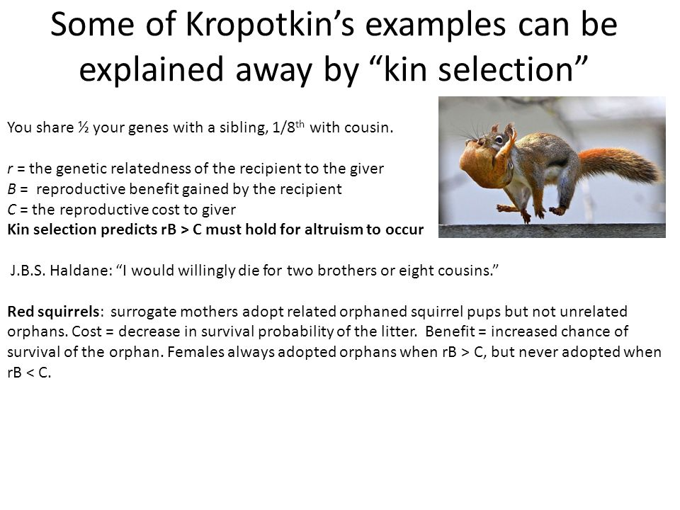 Some of Kropotkin's examples can be explained away by kin selection