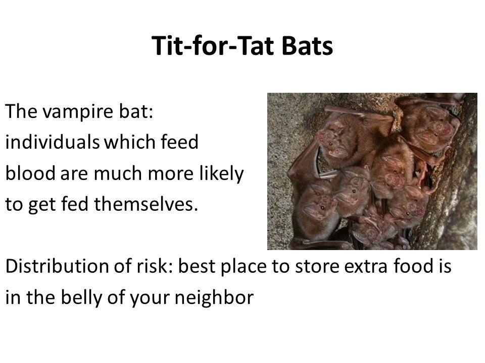 Tit-for-Tat Bats