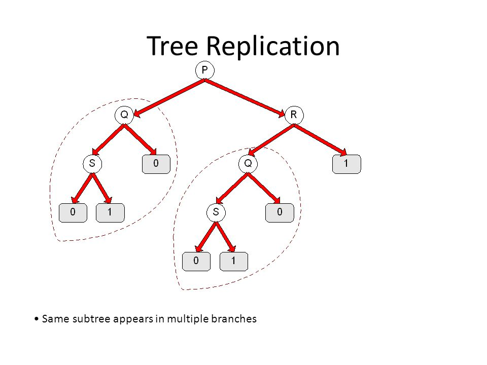 Tree Replication Same subtree appears in multiple branches