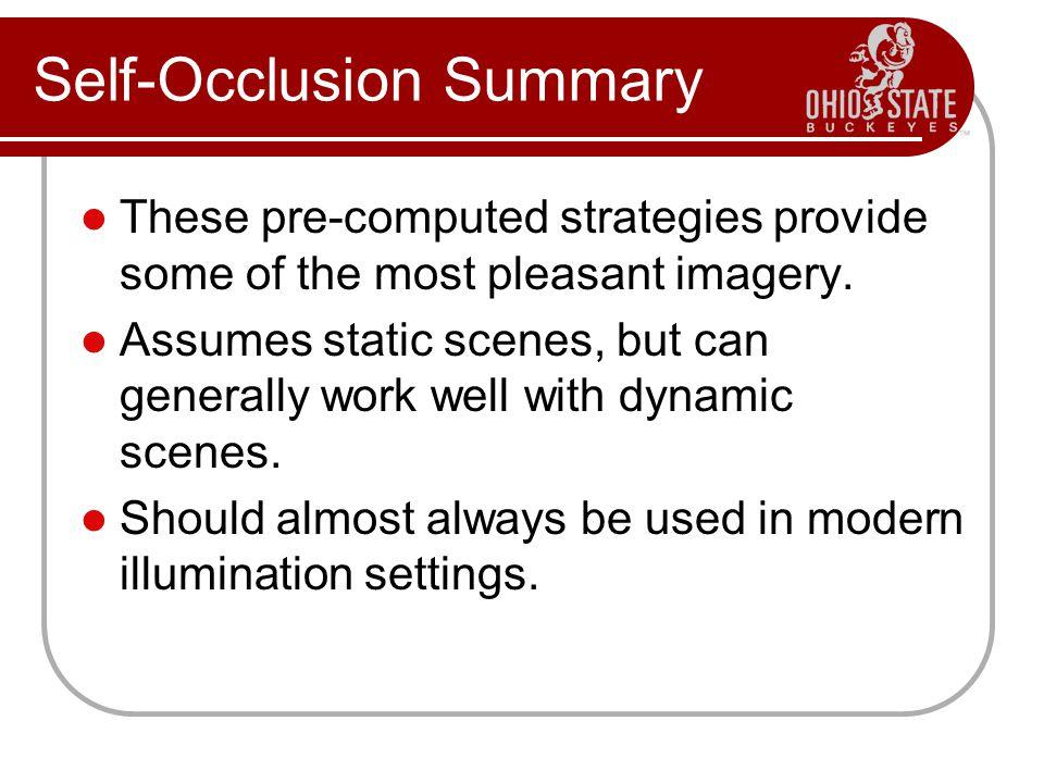 Self-Occlusion Summary