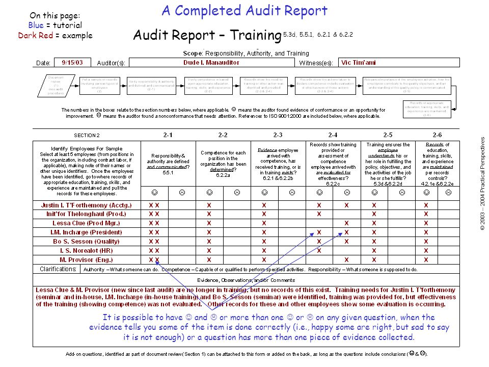 A Completed Audit Report