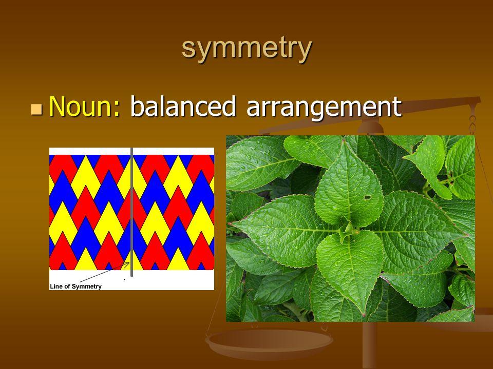 symmetry Noun: balanced arrangement