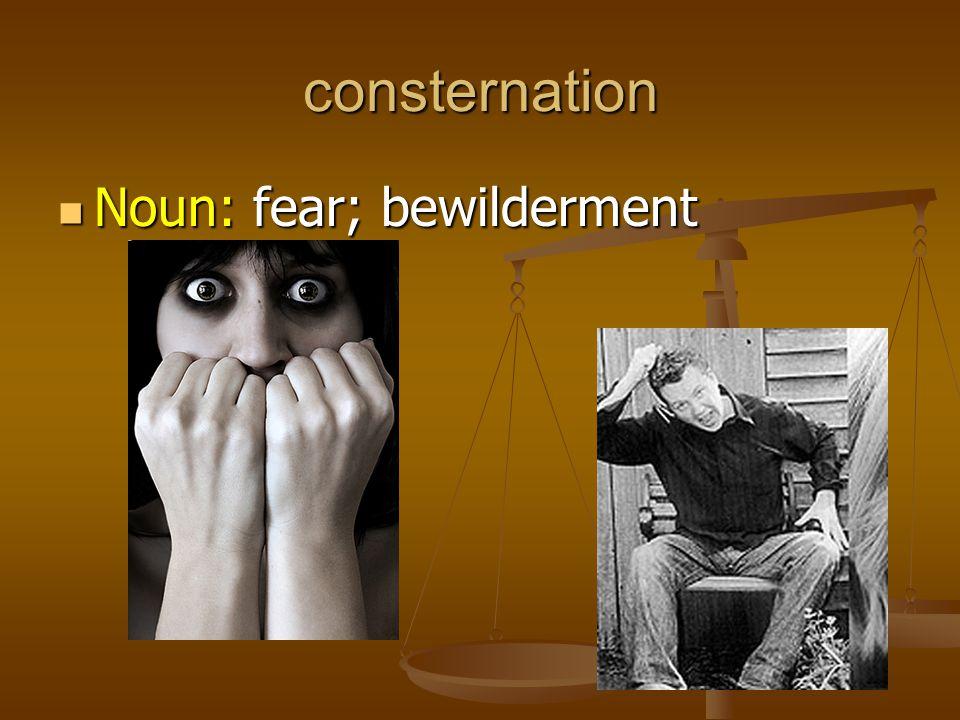 consternation Noun: fear; bewilderment