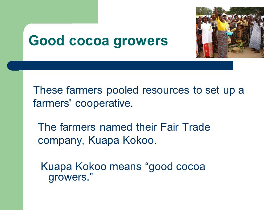 Good cocoa growers These farmers pooled resources to set up a farmers cooperative. The farmers named their Fair Trade.