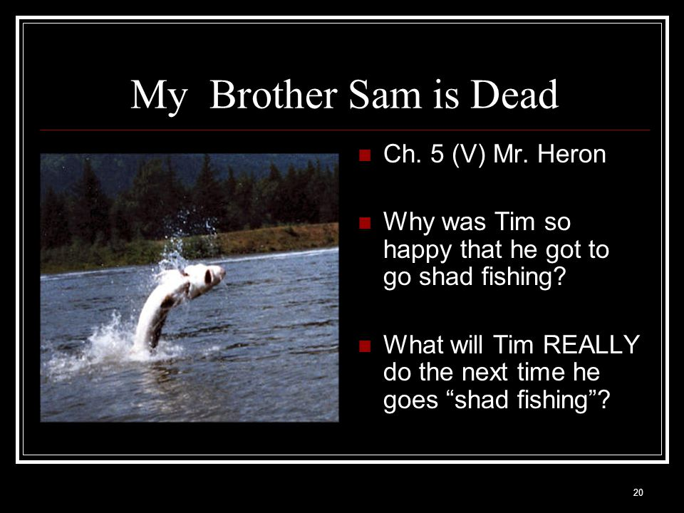 My Brother Sam is Dead Ch. 5 (V) Mr. Heron
