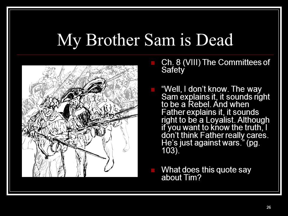 My Brother Sam is Dead Ch. 8 (VIII) The Committees of Safety