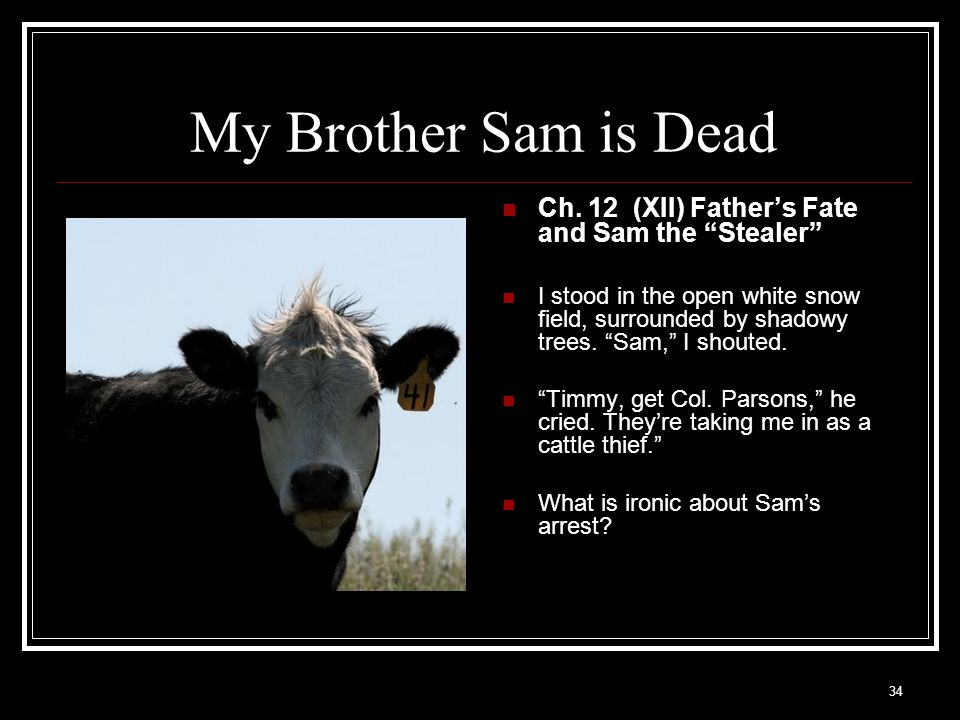 My Brother Sam is Dead Ch. 12 (XII) Father's Fate and Sam the Stealer