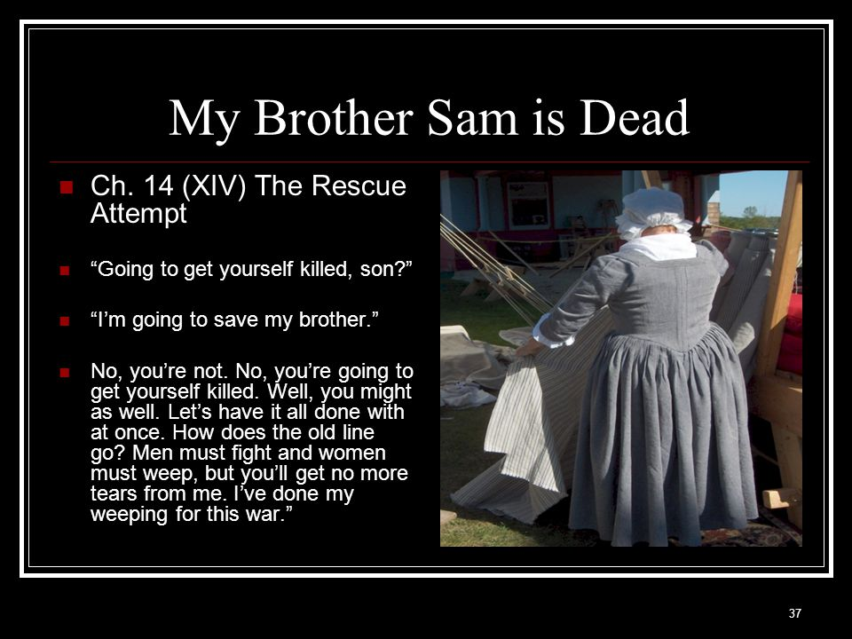 My Brother Sam is Dead Ch. 14 (XIV) The Rescue Attempt