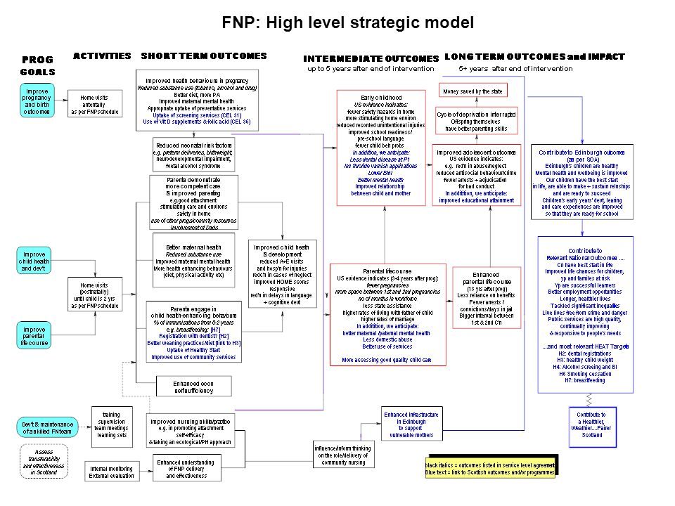 FNP: High level strategic model