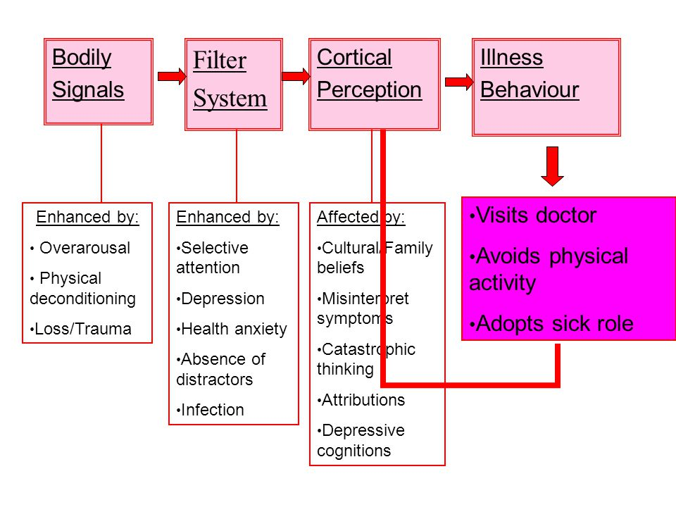 Filter System Bodily Signals Cortical Perception Illness Behaviour