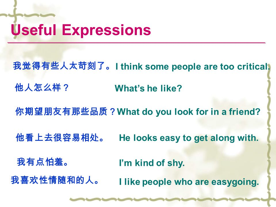 Useful Expressions 我觉得有些人太苛刻了。 I think some people are too critical.