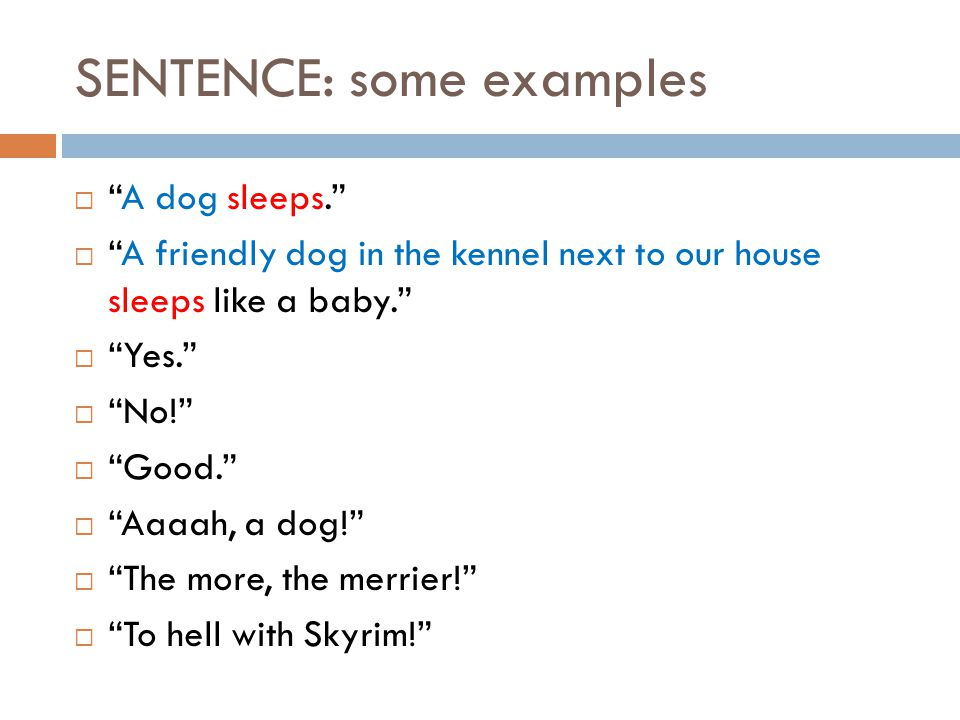 SENTENCE: some examples