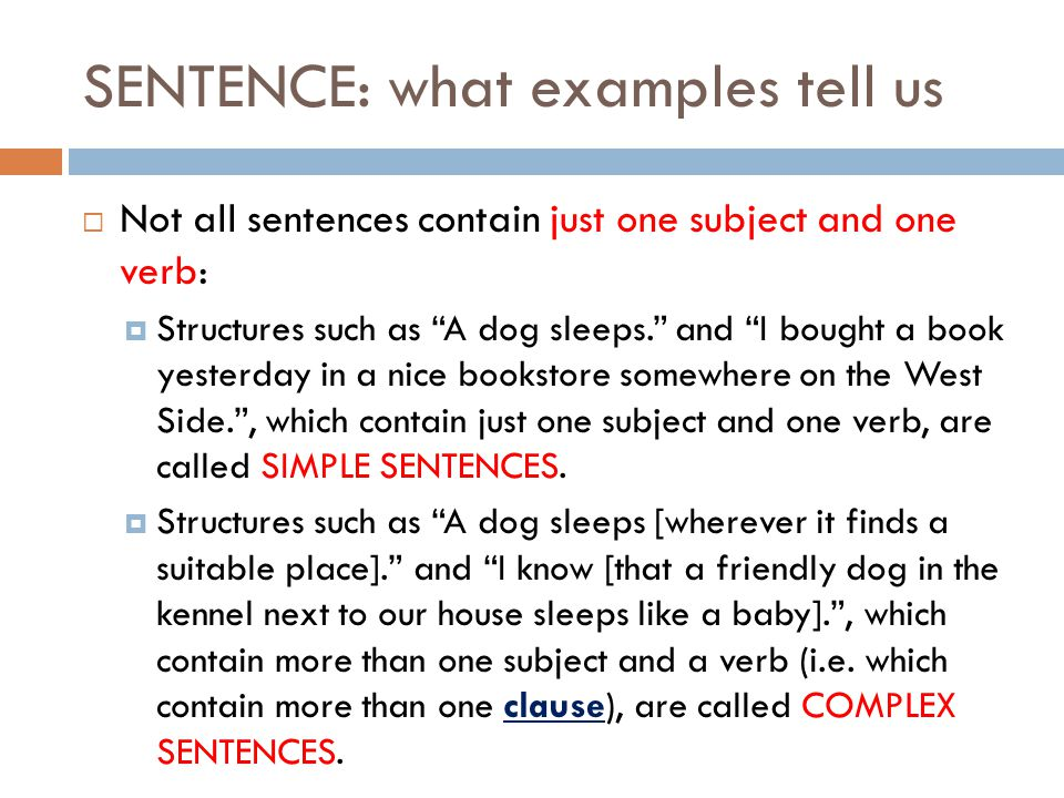 SENTENCE: what examples tell us