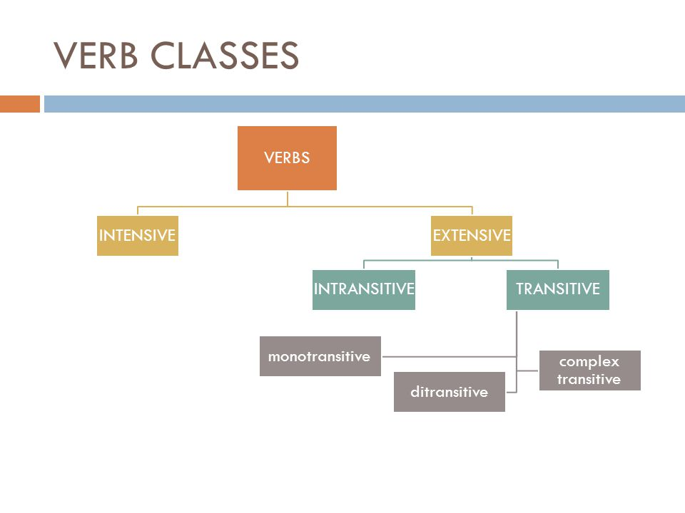 VERB CLASSES VERBS INTENSIVE EXTENSIVE INTRANSITIVE TRANSITIVE