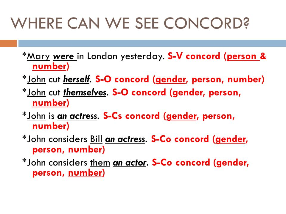 WHERE CAN WE SEE CONCORD