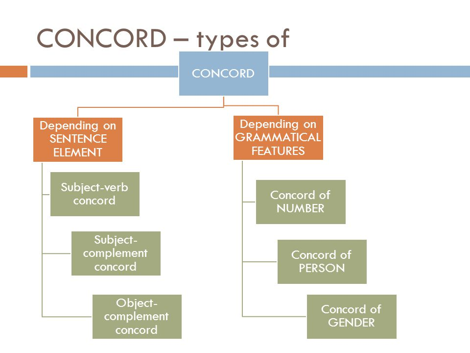 CONCORD – types of CONCORD Depending on GRAMMATICAL FEATURES