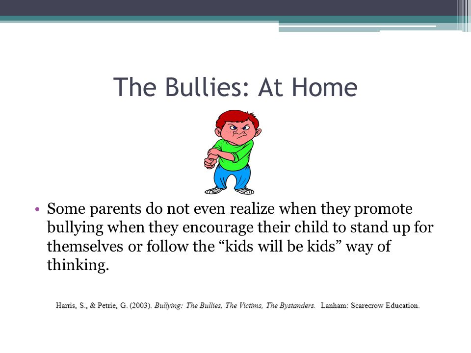 The Bullies: At Home