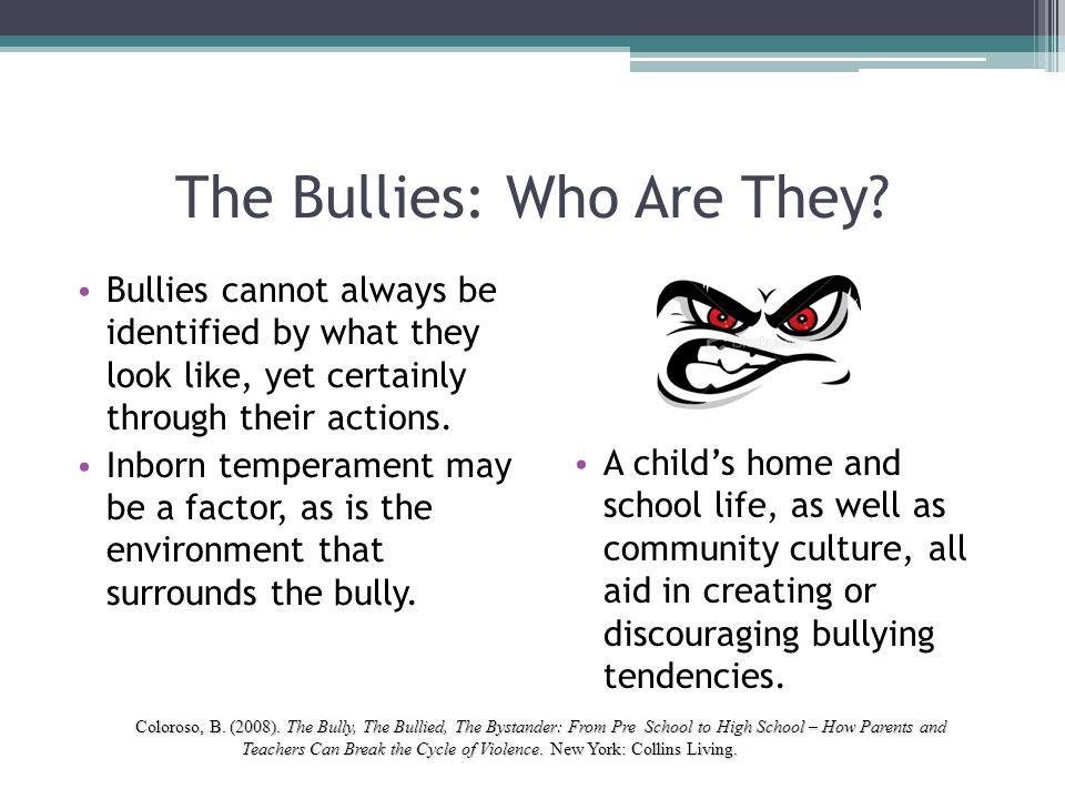 The Bullies: Who Are They