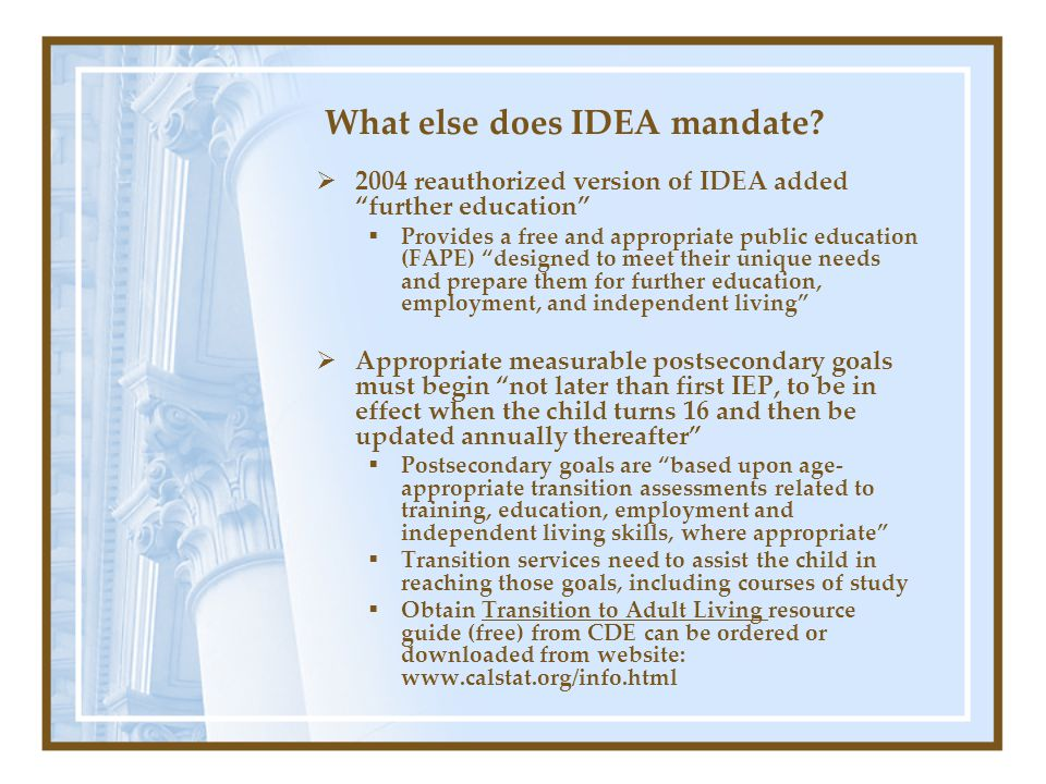 What else does IDEA mandate