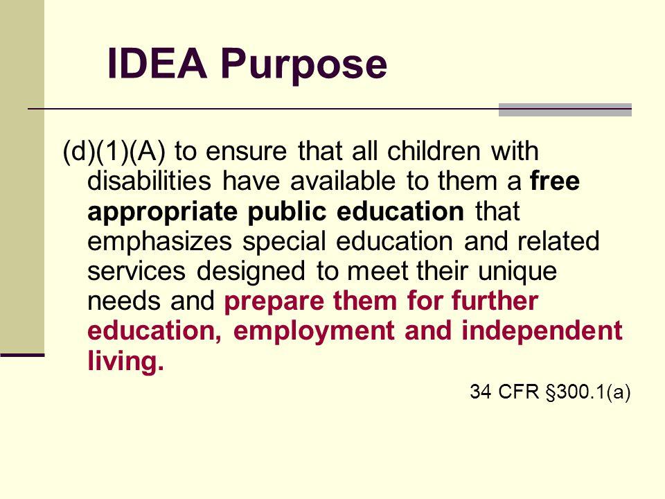 IDEA Purpose