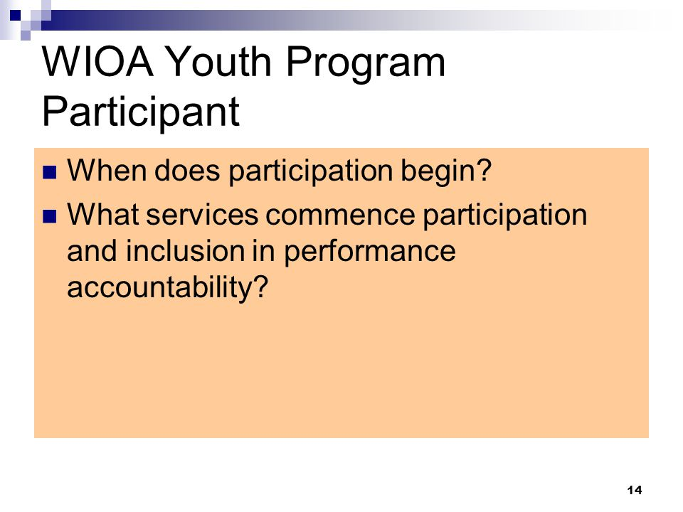 WIOA Youth Program Participant