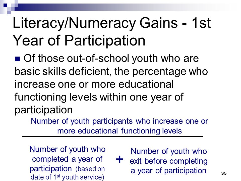 Literacy/Numeracy Gains - 1st Year of Participation