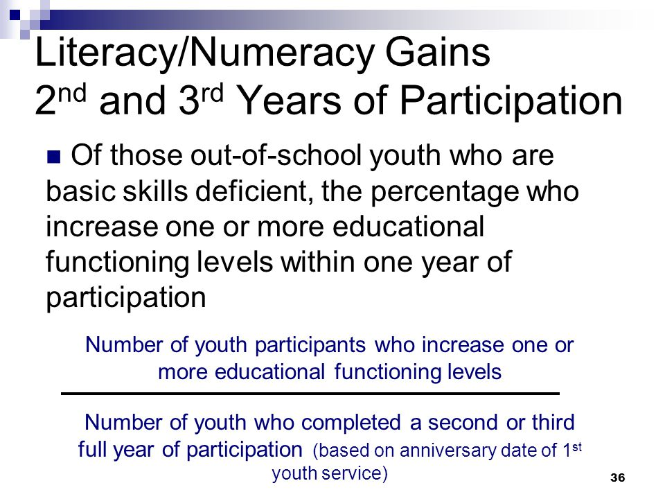 Literacy/Numeracy Gains 2nd and 3rd Years of Participation