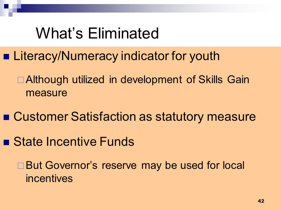 What's Eliminated Literacy/Numeracy indicator for youth