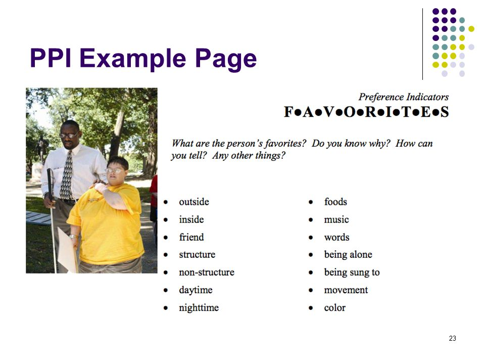 PPI Example Page