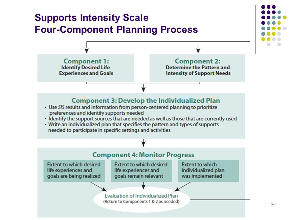 Supports Intensity Scale Four-Component Planning Process