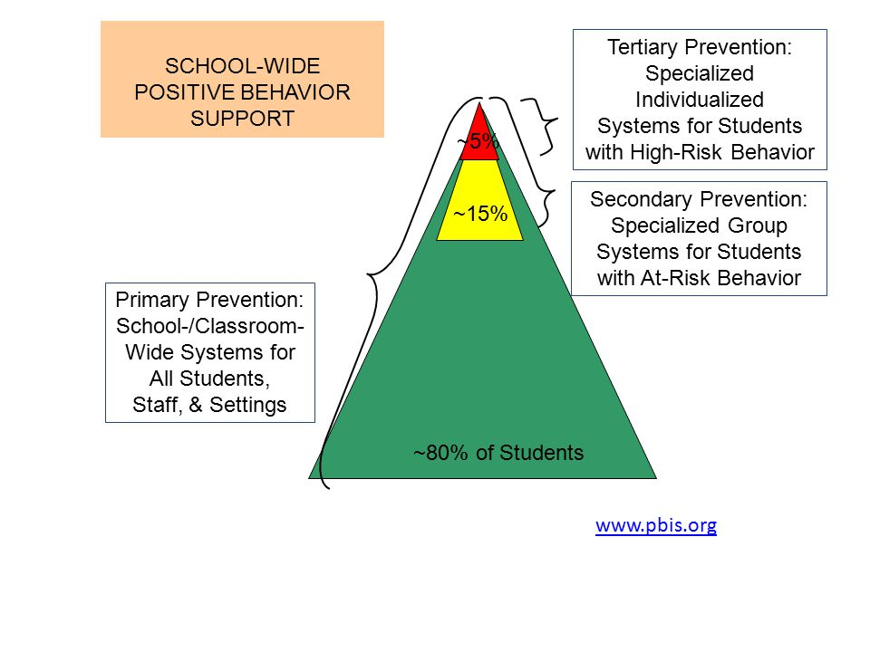 Systems for Students with High-Risk Behavior
