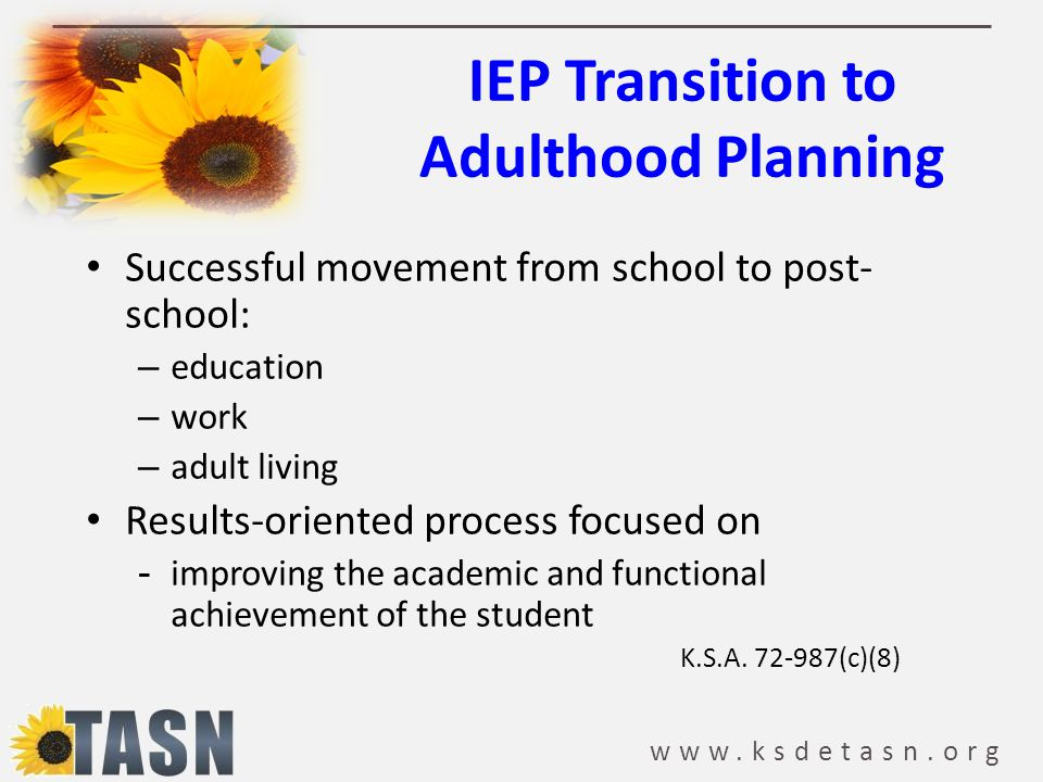 IEP Transition to Adulthood Planning